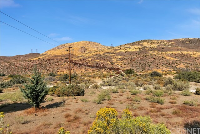 940 E Soledad Pass Rd, Acton, CA 93550 Photo 33