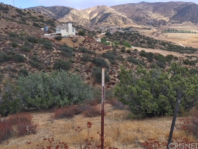 0 Vac/Vic Clayvale St/Larchfork Rd, Acton, CA 93510 Photo 4