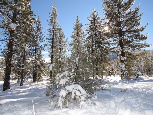 3124 Mount Pinos Wy, Frazier Park, CA 93225 Photo 9