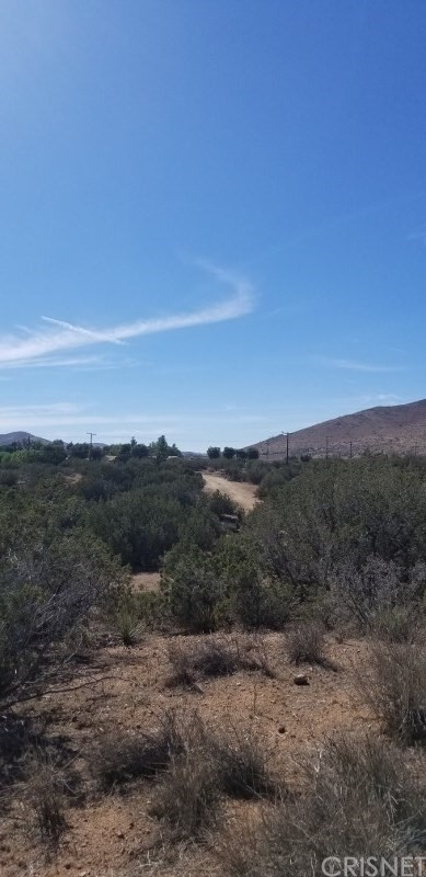 33062 Crown Valley Rd, Acton, CA 93510 Photo 1