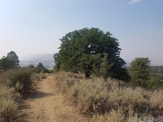 0 Backes Lane, Tehachapi, CA 93561