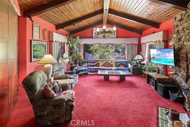 29120 Maryhill Rd, Acton, CA 93510 Photo 8