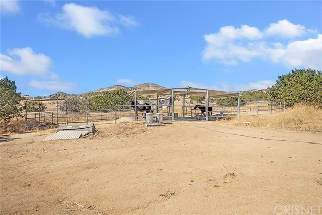 6005 Mamers Rd, Acton, CA 93510 Photo 20