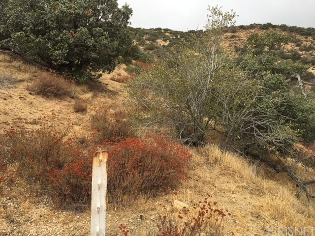 0 Vac/Vic Clayvale St/Larchfork Rd, Acton, CA 93510 Photo 6