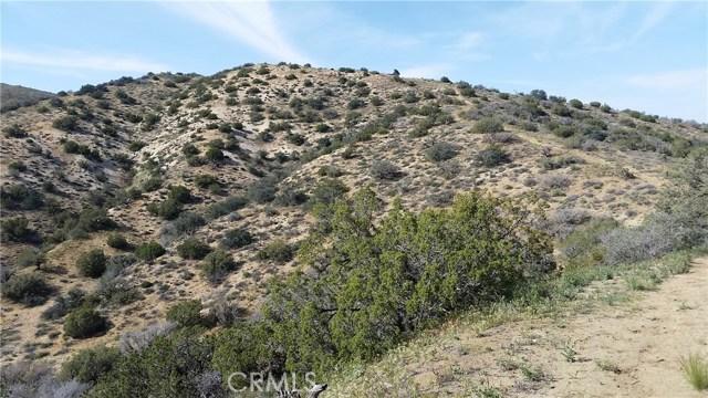 0 Juniper Ridge Ln, Acton, CA 91350 Photo 3