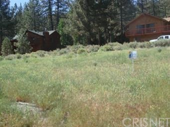 2324 Cypress Way, Pine Mtn Club, CA 93222