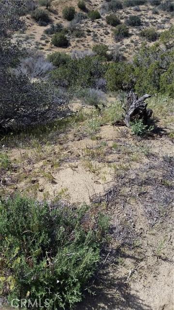 0 Juniper Ridge Ln, Acton, CA 91350 Photo 8