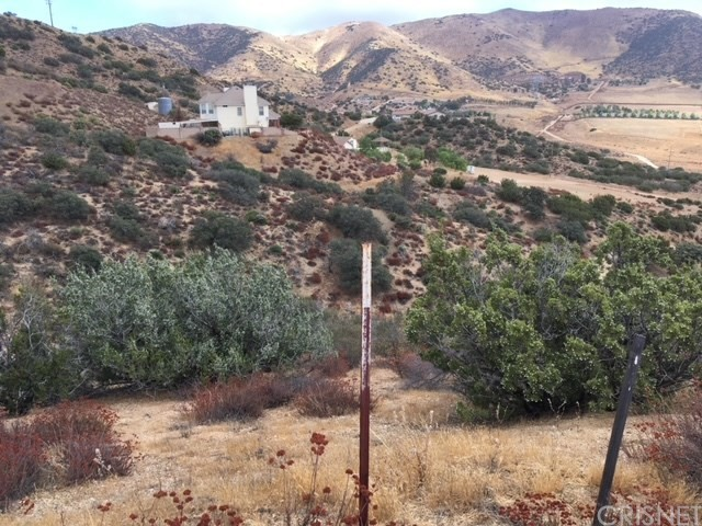 0 Vac/Vic Clayvale St/Larchfork Rd, Acton, CA 93510 Photo 1
