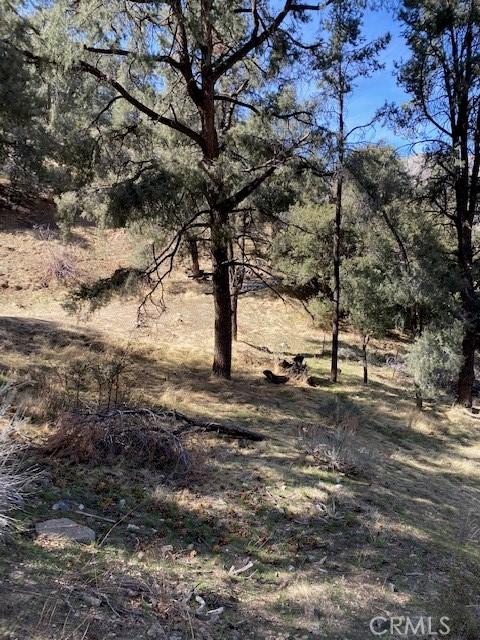 4037 Encino, Frazier Park, CA 93225 Photo 4