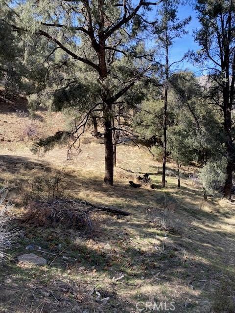 4037 Encino, Frazier Park, CA 93225 Photo 0