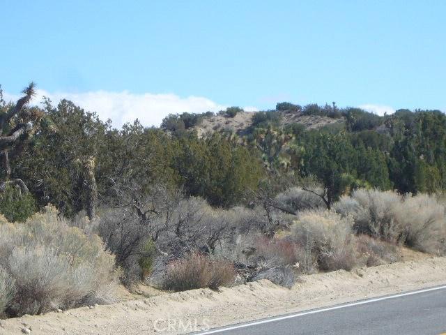 0 Vac/Longview Rd/Vic Avenue Y4, Juniper Hills, CA 93543