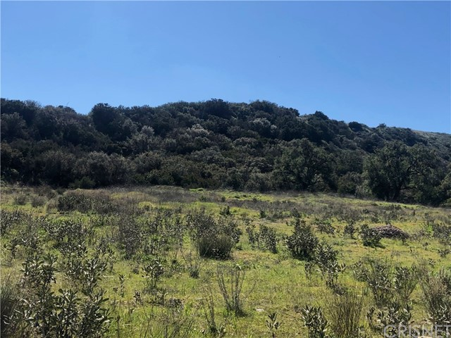 0 Hasley Canyon Road, Castaic, CA 91310