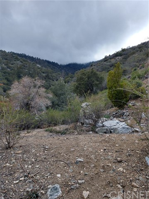 0 Truman Trail, Frazier Park, CA 93225
