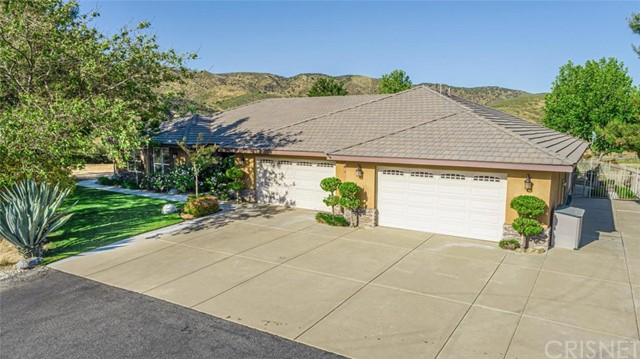 9828 Elizabeth Lake Road, Leona Valley, CA 93551