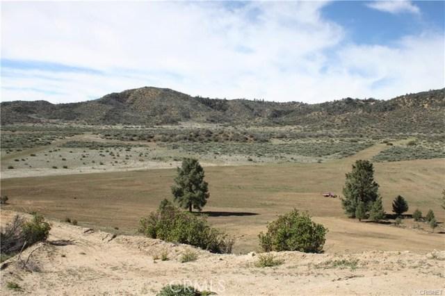 133 Boy Scout Camp, Frazier Park, CA 93225 Photo 3