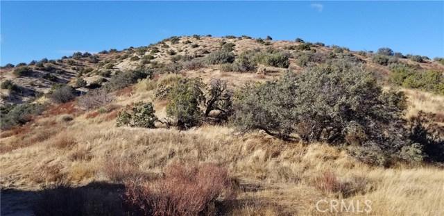 0 Juniper Ridge Ln, Acton, CA 91350 Photo 2