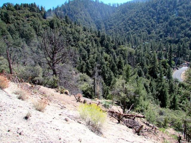 1725 Saint Anton Dr, Pine Mtn Club, CA 93222 Photo 10