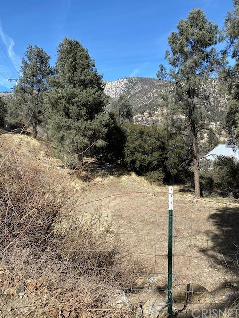 4037 Encino, Frazier Park, CA 93225 Photo 2