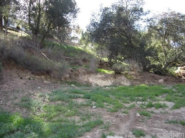 12001 Kagel Canyon Rd, Kagel Canyon, CA 91342 Photo 5