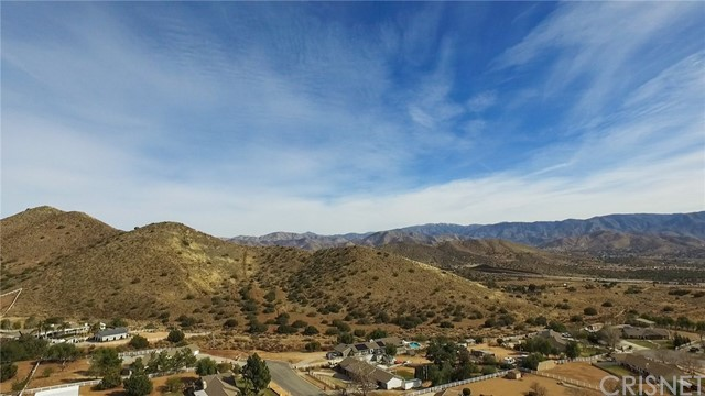3607 Silver Spur Ln, Acton, CA 93510 Photo 58