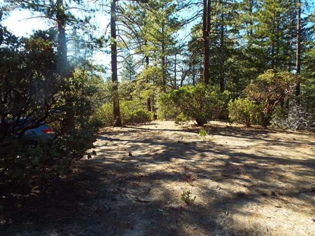 0 Mcgovern, Pine Cove, CA 92549