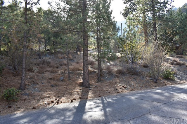 5236 Desert View Drive, Wrightwood, CA 92397