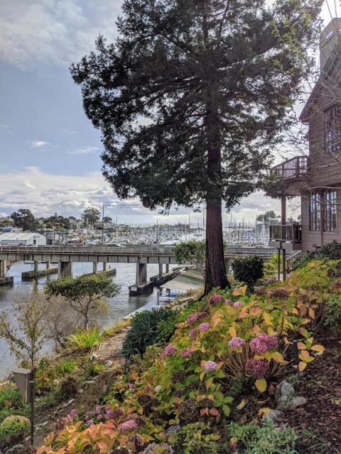101 Frederick D, Santa Cruz, CA 95062