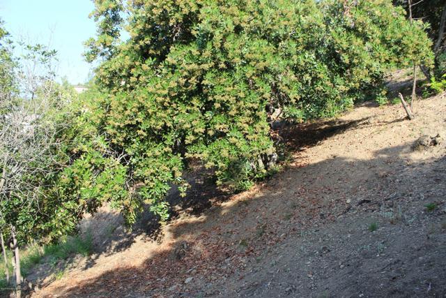 2123 Hanscom Drive, South Pasadena, CA 91030