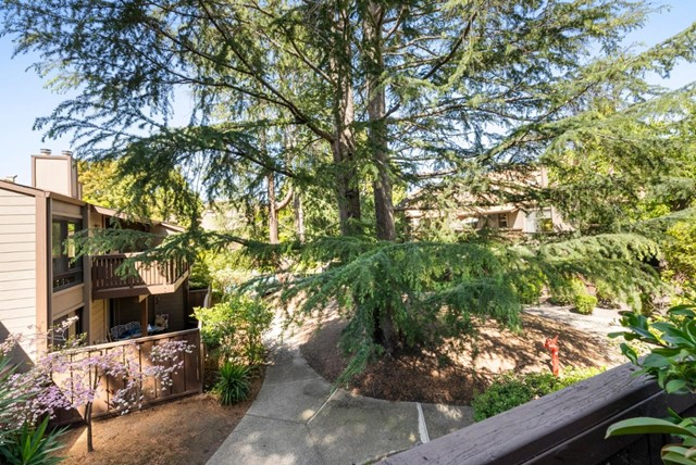 28. 2040 Middlefield Road #24 Mountain View, CA 94043