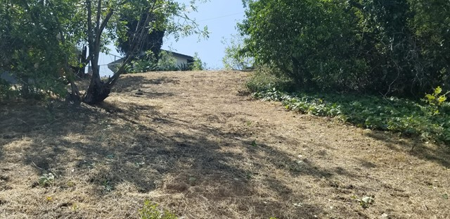 Lavell, Los Angeles, California 90065, ,Land,For Sale,Lavell,820001666