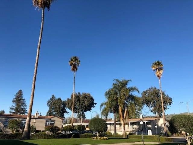 436 GIANNOTTA 436, San Jose, CA 95133