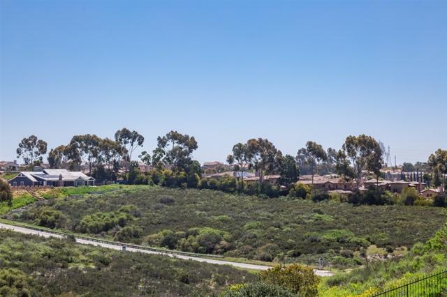 2 Del Mar Mesa RD 2, San Diego, CA 92130