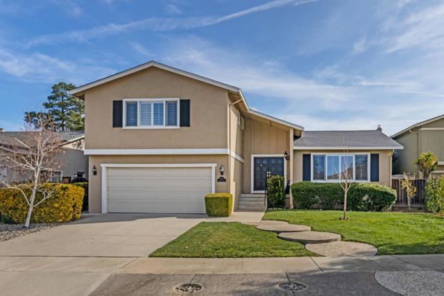 5388 Greenbank Court, San Jose, CA 95118