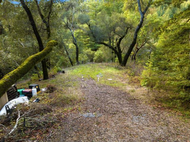 0 Treehouse, Outside Area (Inside Ca), CA 95033