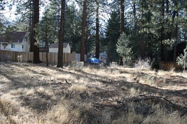 1900 Linnet Rd, Wrightwood, CA 92397