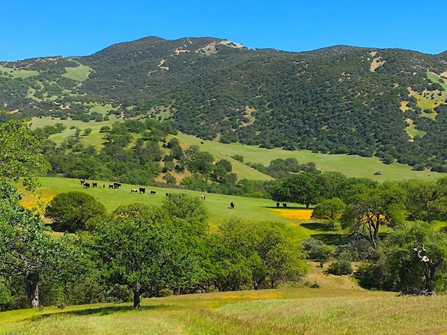 0 Carmel Valley Road, Greenfield, CA 93927