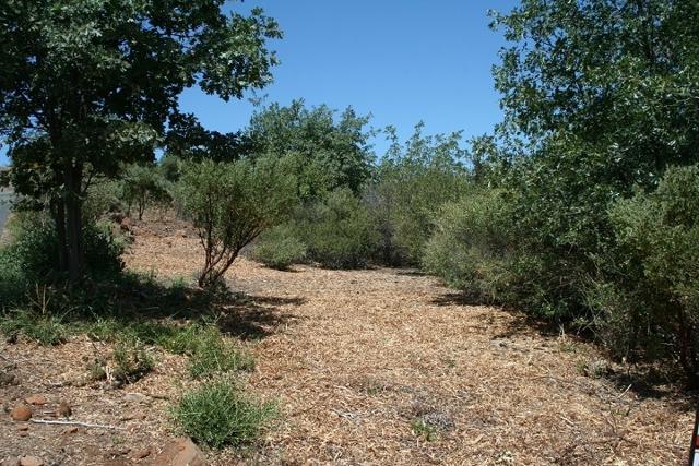 Oak Way, Julian, CA 92036