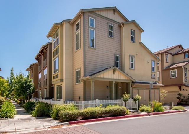 227 Peppermint Tree Terrace 4, Sunnyvale, CA 94086