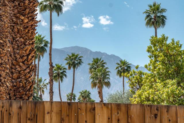 44-Backyard View