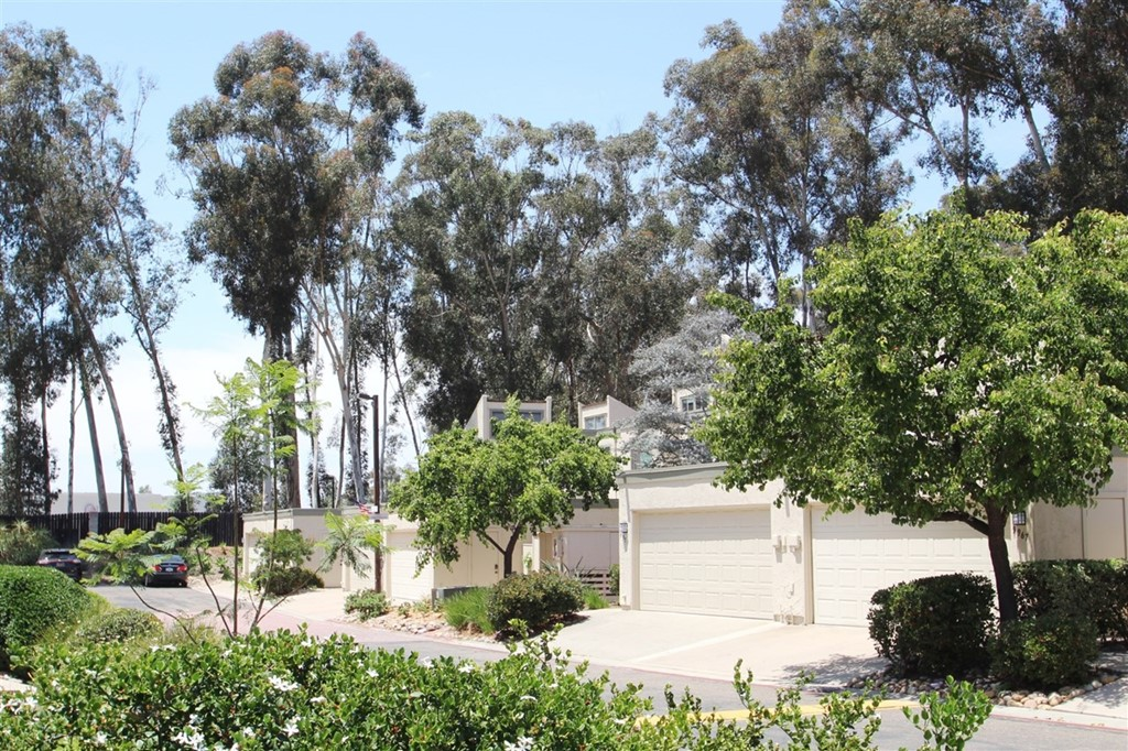 """Welcome to the desirable Village Woods at Scripps Ranch. Spectacular move in ready home with 4 bedrooms and 2-1/2 baths. This home is bordered by beautiful eucalyptus trees which capture the """"Woods"""" feel of Scripps Ranch. Warm flooring in living room with sliding door and shutters opening out to your back yard. Fun kitchen colors open to your family room which has direct access to your private front patio with plenty of room for outdoor dining. The master bedroom has expansive ceilings and modern colors. Neighborhoods: Scripps Ranch Other Fees: 0 Sewer:  Sewer Connected"""