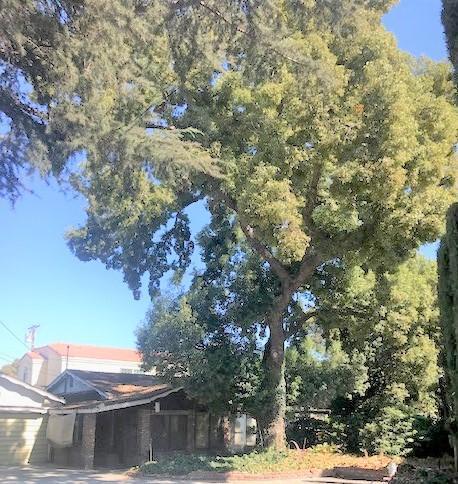 4214 Maxson Road, El Monte, CA 91732