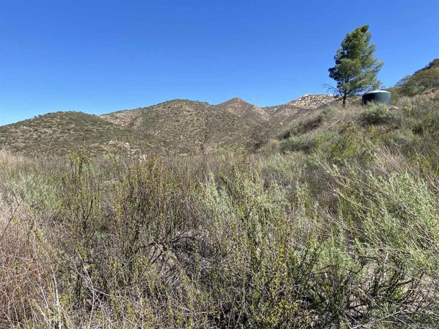 17771 Highway 94, Dulzura, CA 91917 Photo 50