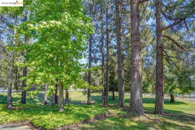 35. 650 Canyon Oaks #G Oakland, CA 94605
