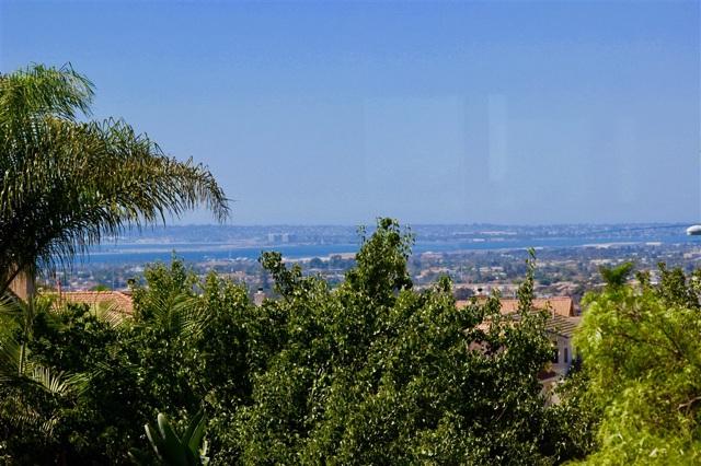 820 Briarpoint Pl, San Diego, CA 92154