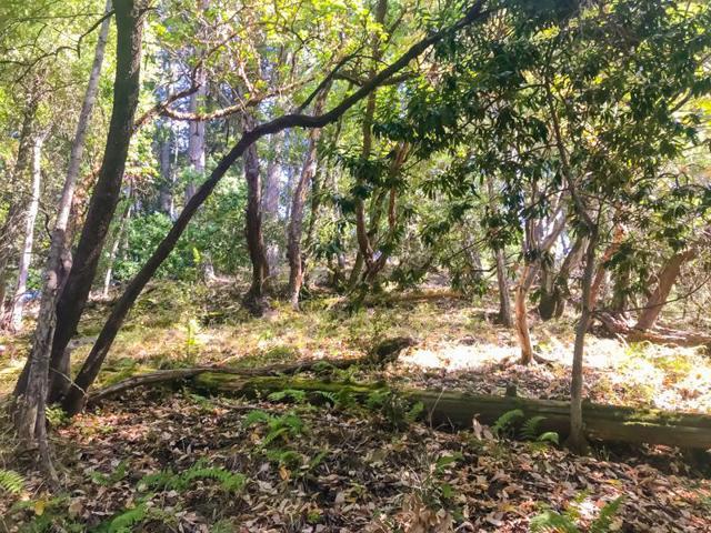 40 Logan Creek Road, Outside Area (Inside Ca), CA 95006