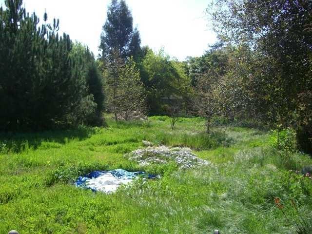 9015 Lemon Ave, La Mesa, CA 91941 Photo 1