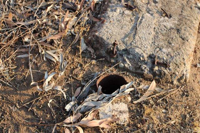 Road, Dulzura, CA 91917 Photo 7