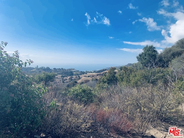 2460 Tuna Canyon, Topanga, CA 90290