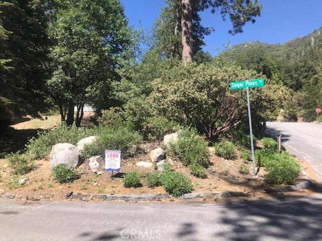 0 Sugar Pnes Circle, Angelus Oaks, CA 92305