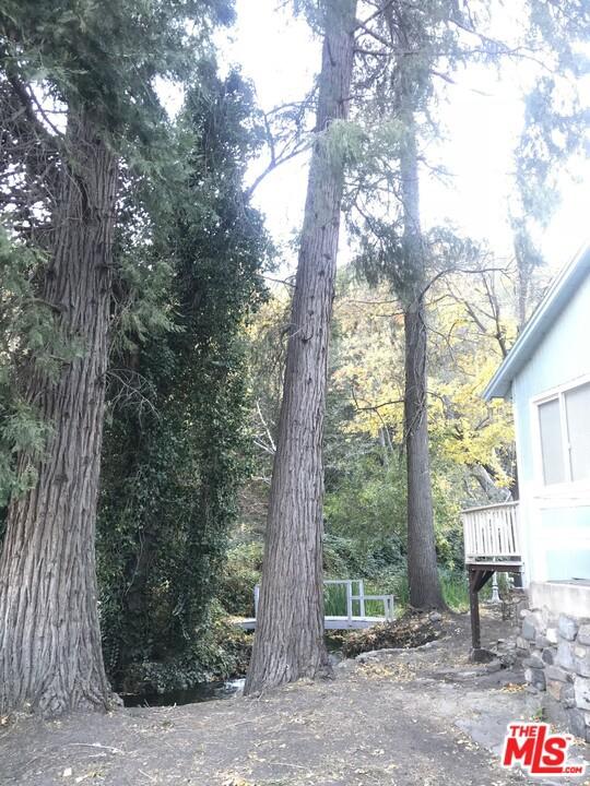 14043 Meadow Ln, Lytle Creek, CA 92358 Photo 35